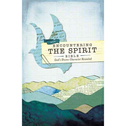 Holy Bible: New International Version Encountering The Spirit, God's Divine Character Revealed
