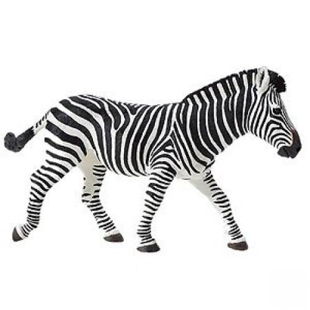Safari Ltd Wildlife Wonders Zebra](Wild Zebra)