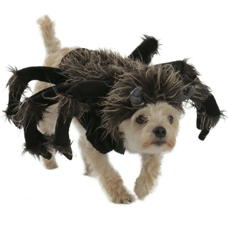 Princess Paradise Premium Tarantula Dog Costume](Tarantula Dog Halloween)