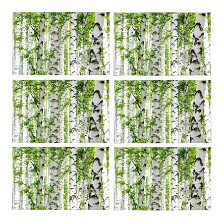 Birch Dining Room Side Table - MKHERT White Birch Trees in Forest in Summer Nature Theme Placemats Table Mats for Dining Room Kitchen Table Decoration 12x18 inch,Set of 6