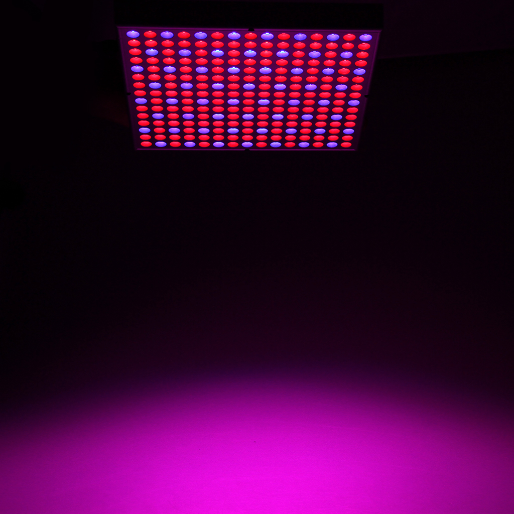 Excelvan 14W 225 LED Hydroponic Plant Grow Light and Lighting Panel, Blue  and Red Lights for Indoor Garden (165 Red + 60 Blue)