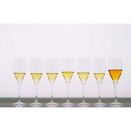 Wine Tasting Glasses Maison de la Champagne Stretched Canvas - Per Karlsson  DanitaDelimont (36 x (Maison Martin Margiela Glasses)