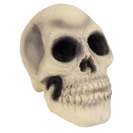 Halloween Table Decorations Diy (Veil Entertainment Rubber Skull Halloween 7.5