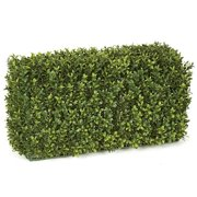 Autograph Foliages AUV-133000 24 in. x12 in. x 12 in. BOXWOOD HEDGE - TT GREEN