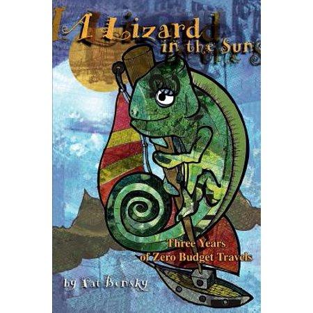 A Lizard in the Sun : Three Years of Zero Budget (Best Budget Zero Turn)