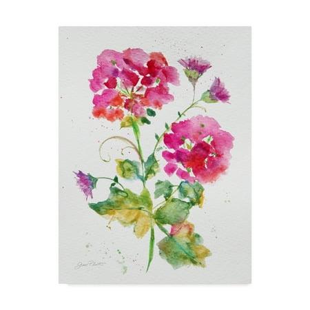 Canvas Jean (Trademark Fine Art 'Watercolor Flowers 1' Canvas Art by Jean Plout )