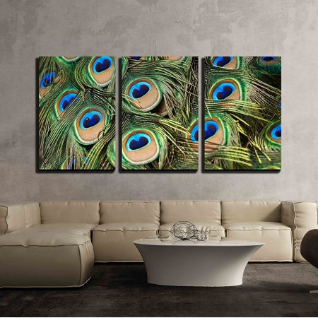 Wall26 3 Piece Canvas Wall Art Beautiful Vivid Peacock Feathers Modern Home Decor Stretched And Framed Ready To Hang 24x36x3 Panels