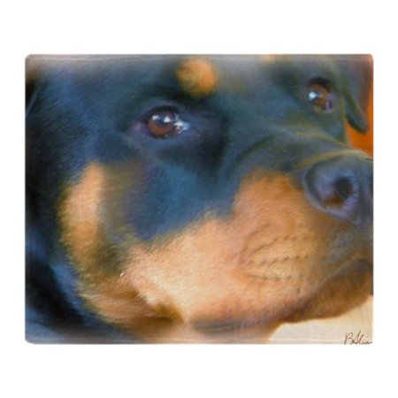 CafePress - Rottweiler - Best Friend - Soft Fleece Throw Blanket, 50