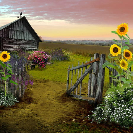 Pro Tour Memorabilia Barn Farm Scene Canvas Print