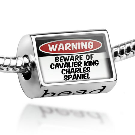 Bead Beware of the Cavalier King Charles Spaniel Dog from England Charm Fits All European