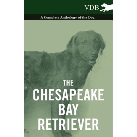 Chesapeake Bay Retriever Sticker - The Chesapeake Bay Retriever - A Complete Anthology of the Dog - - eBook