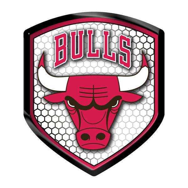 Chicago Bulls Shield Style Reflector