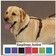Pet Pals US2395 08 81 Z & Z Nylon Harness 8-14 In Raspberry Sorbet