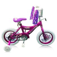 12 in. Bicycle in Purple Finish