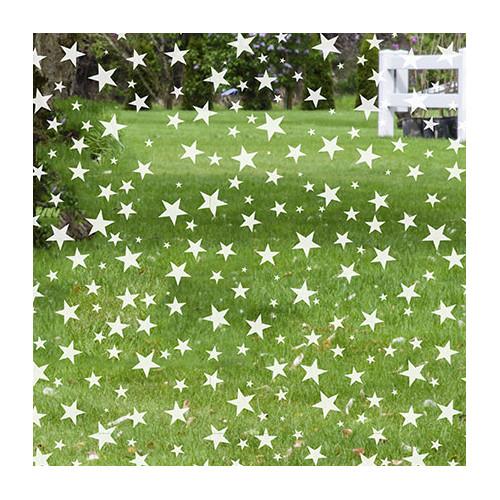 Stick Pretty Star Struck Decorative Window Film