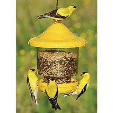 Yellow Hammer Bird (Songbird Essentials SE7011 Clinger Only Bird Feeder,)