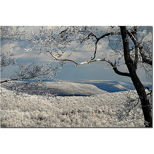 "Trademark Fine Art ""Winter Scene"" Canvas Art by Lois Bryan"