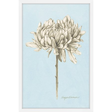 Marmont Hill Botanical Study II Framed Wall Art