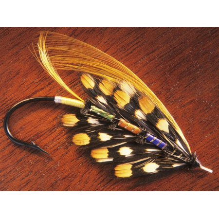 Hand Tied Atlantic Salmon Fishing Fly, British Columbia, Canada. Print Wall Art By Keith (Best Fly Fishing In Canada)