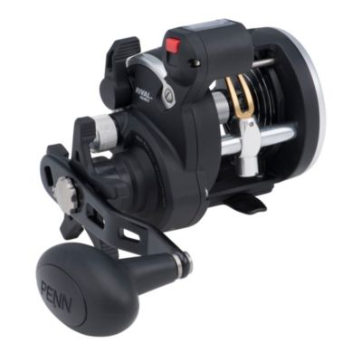 PENN Rival Level Wind Conventional Fishing Reel