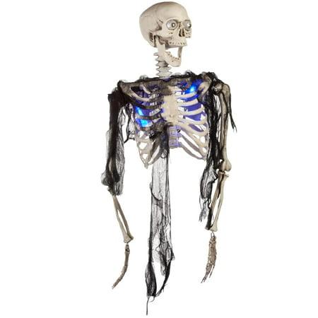 Half Body Skeleton Blue Decoration (Half Skeleton Face)