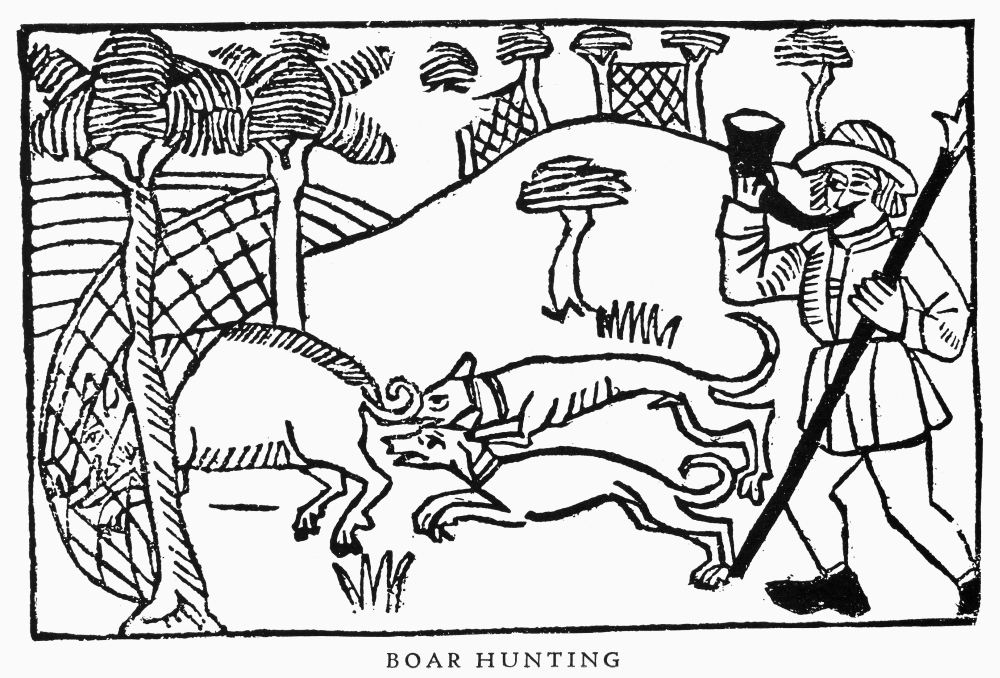 Boar Hunting 1486 Nwoodcut From Le Livre Du Roy Modus 1486 Rolled Canvas Art (18 x 24) by Granger Collection