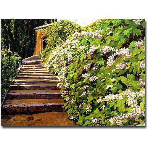 "Trademark Art ""Garden Staiway Tuscany"" Canvas Wall Art by David Lloyd Glover"