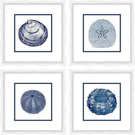 Sea Shells 14
