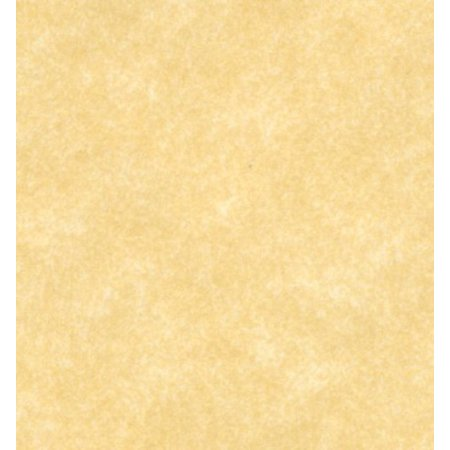 S Superfine Printing 8.5 X 11 Stationery Parchment Card Stock Paper 65lb Cover - 50 Sheets Per Pack (New Champagne)