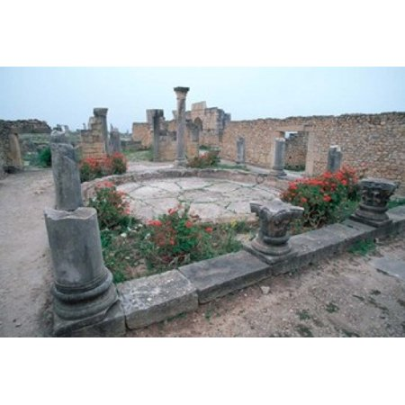 Ruins of Ancient Roman Mansion called House of Columns Morocco Canvas Art - John & Lisa Merrill  DanitaDelimont (24 x 15)](Roman Colums)