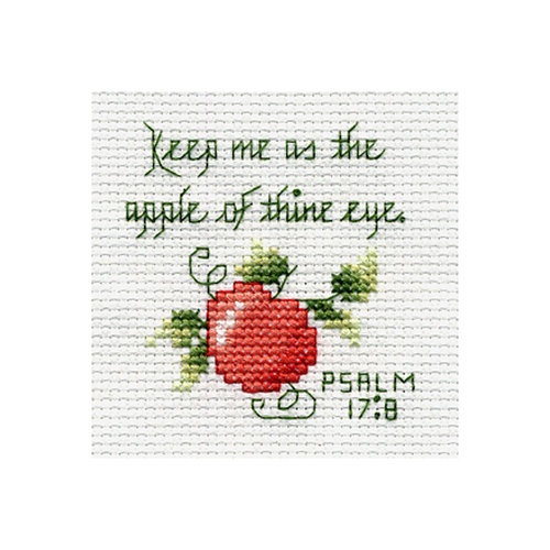Bucilla Beginner Stitch Kit, Psalm
