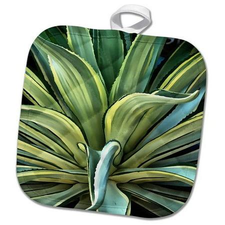 - 3dRose Tropical Agave  Pot Holder