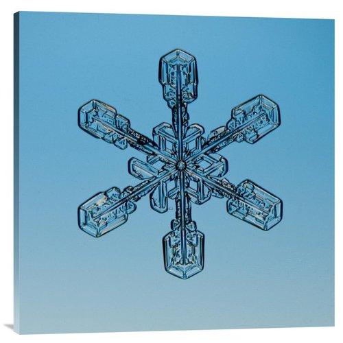 East Urban Home 'Snowflake Seen Through Microscope' Photographic Print on Canvas