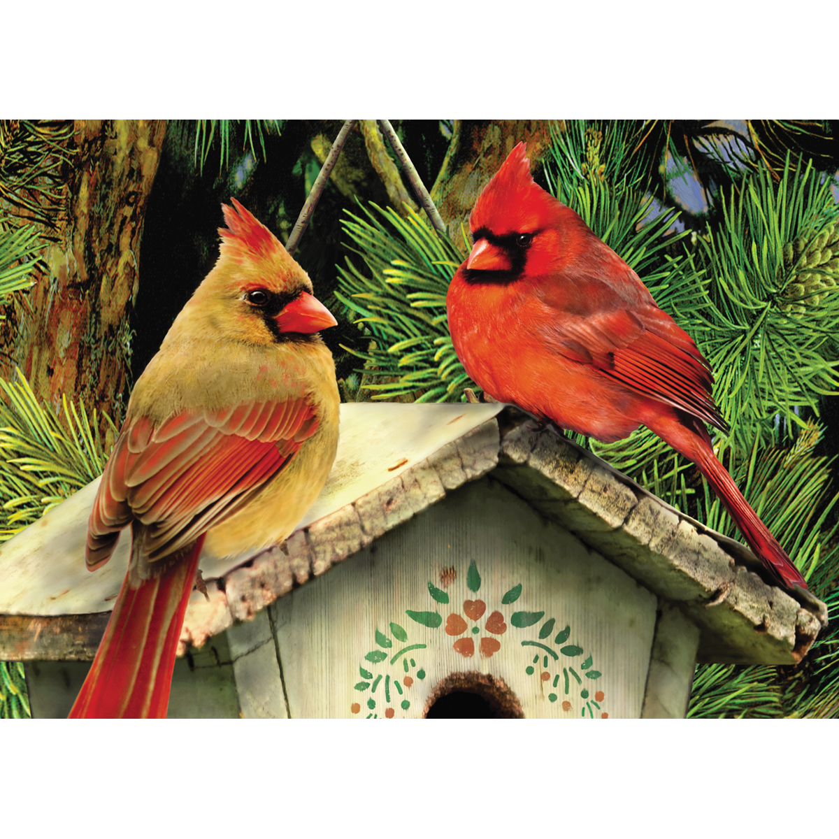 "Mini Paint By Number Kit 5""X7""-Cardinals"