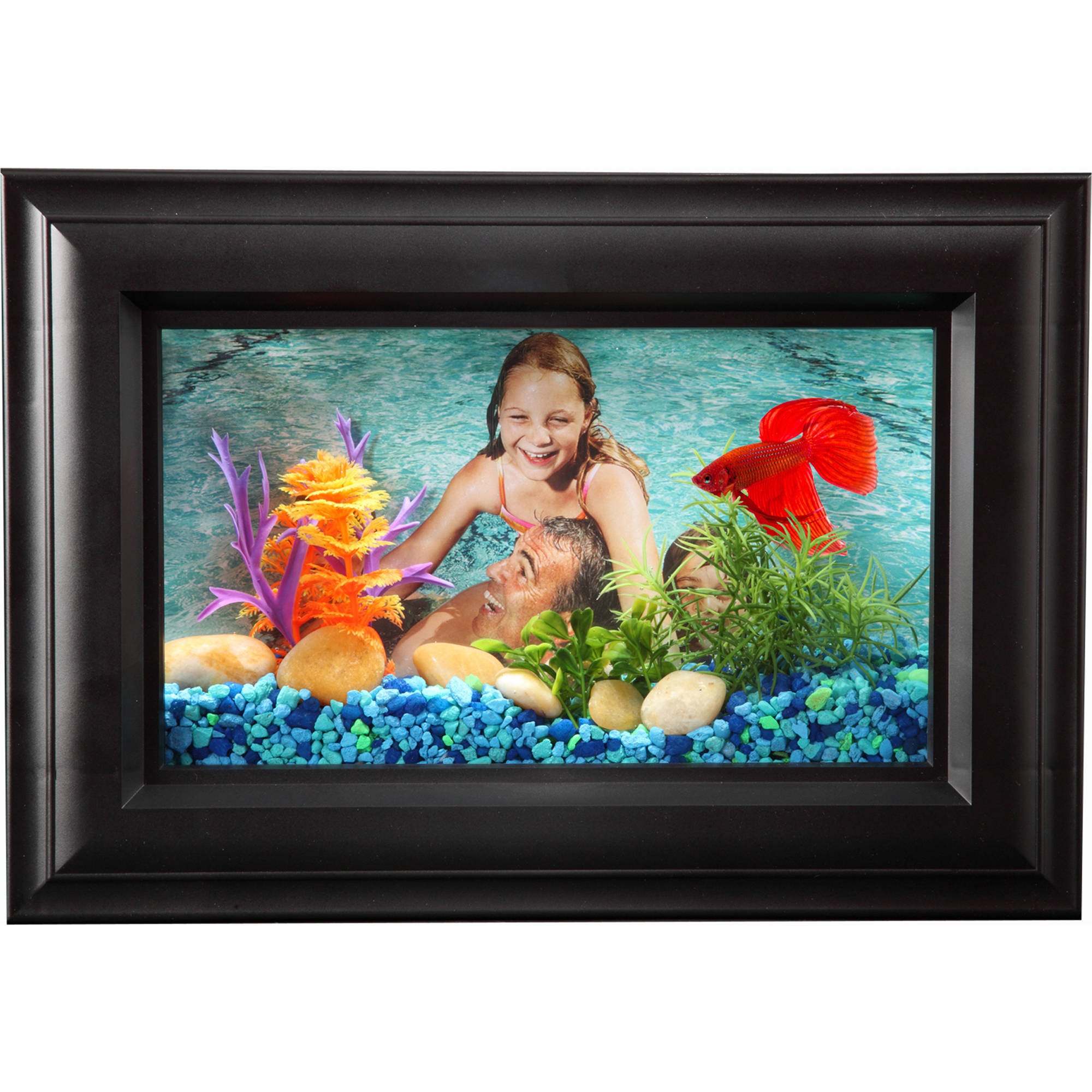 Hawkeye .75 Gallon Picture Frame Aquarium with LED Lighting