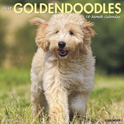 Just Goldendoodles 2019 Wall Calendar (Dog Breed Calendar) (Other)