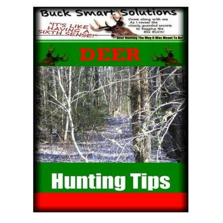 Deer Hunting Tips - image 1 of 1
