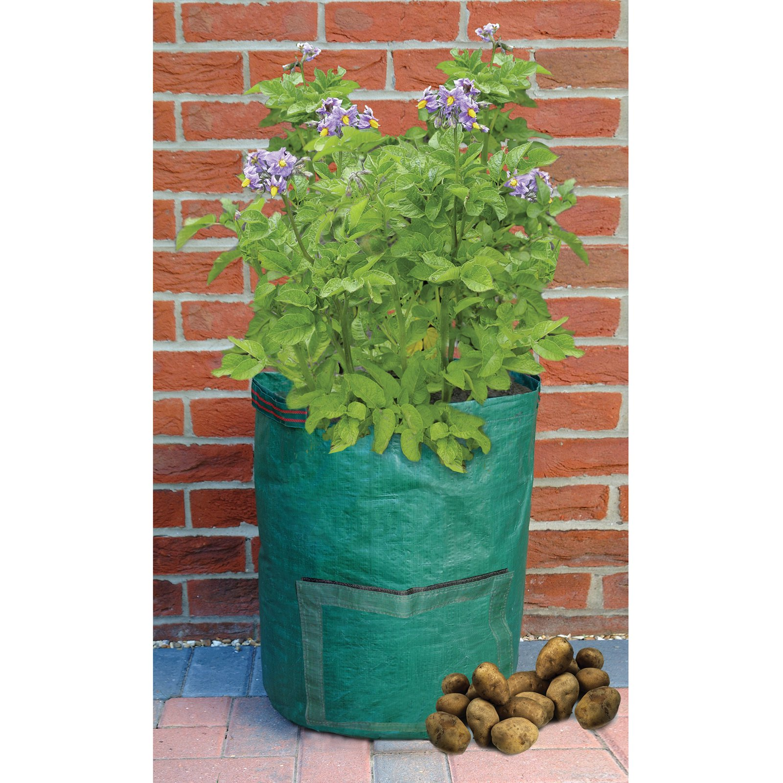 Bosmere Potato Planter Bag