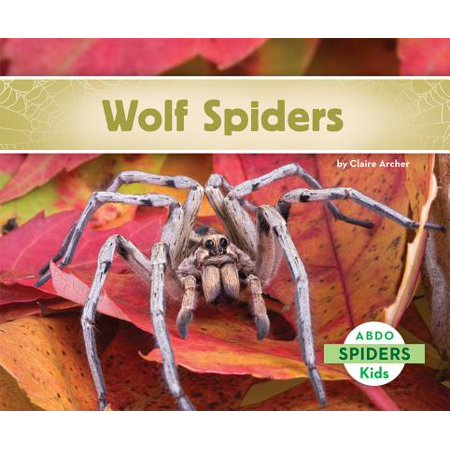 Wolf Spiders for $<!---->