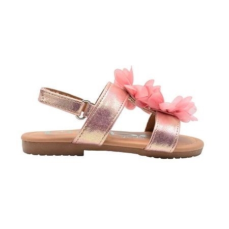 bebe Toddler Girls Fashion Sandal Shimmer Sandal With Chiffon Rhinestone Flower