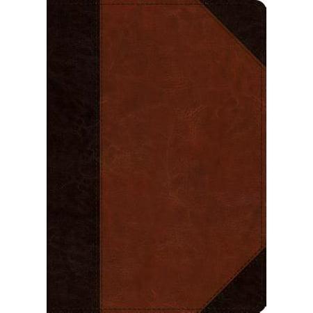 ESV Large Print Wide Margin Bible (Trutone, Brown/Cordovan, Portfolio