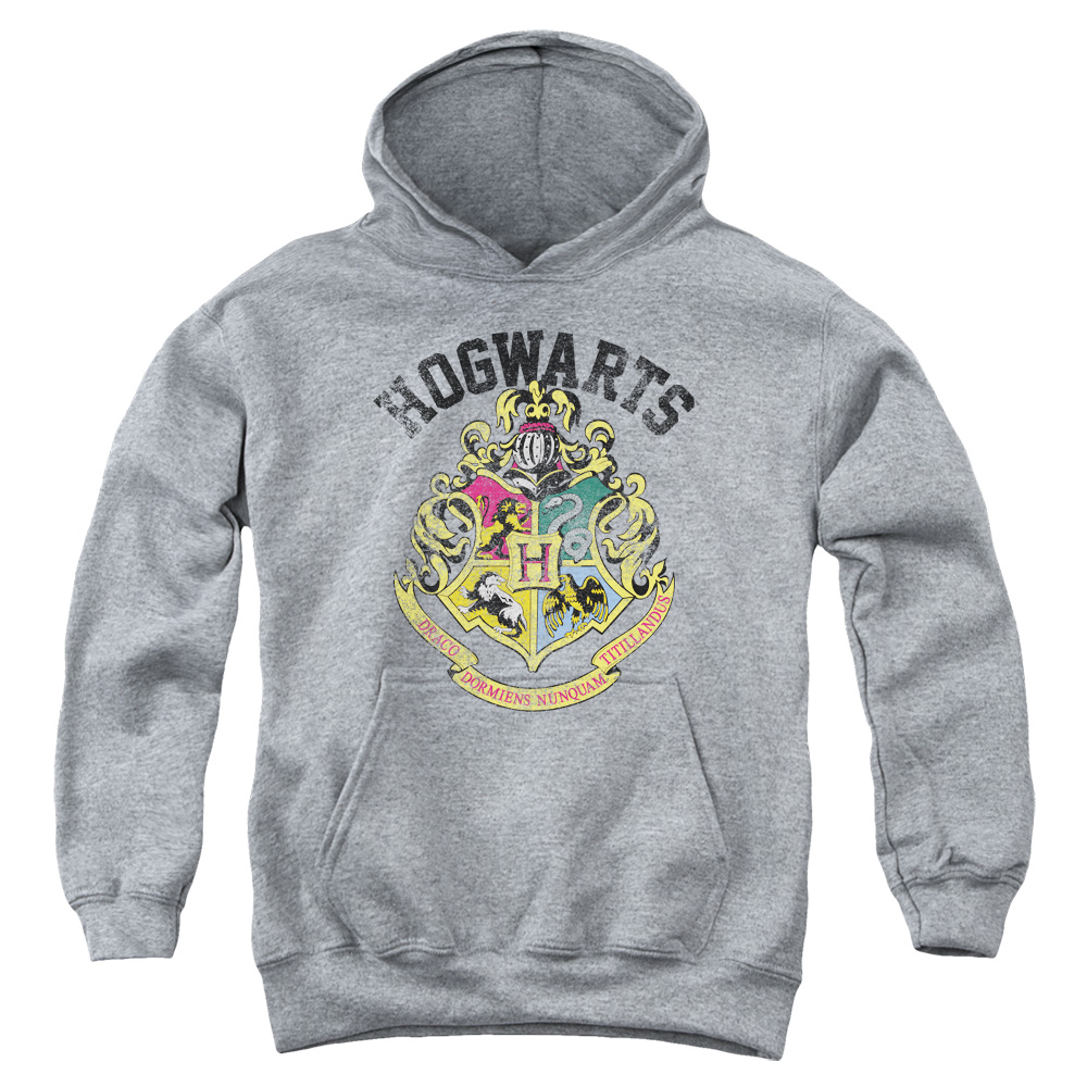 Harry Potter Hogwarts Crest Big Boys Youth Pullover Hoodie