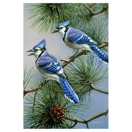 Toland Home Garden Blue Jay Duet Flag Blue Antenna Flag
