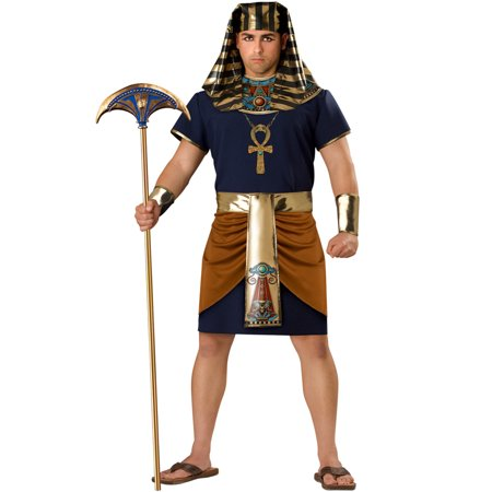 Egyptian Man Plus Size Men's Adult Halloween - Halloween Costumes Egyptian