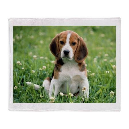 "CafePress - Beagle - Soft Fleece Throw Blanket, 50""x60"" Stadium Blanket"