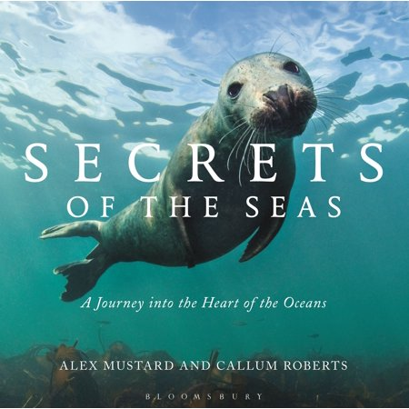 Secrets of the Seas : A journey into the heart of the