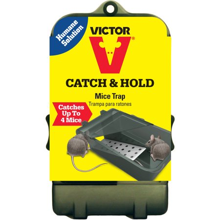 Victor Catch   Hold Mouse Trap