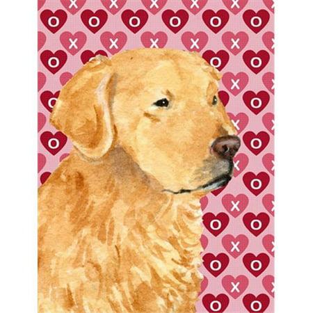 Carolines Treasures SC9243GF 15 x 15 In. Australian Cattle Dog Hearts Love Valentines Day Flag, Garden Size - image 1 de 1