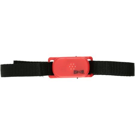 Ranger by Zeus™ Small Anti-Bark Collar