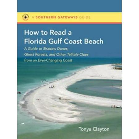 How to Read a Florida Gulf Coast Beach - eBook (Best Florida Gulf Beaches)